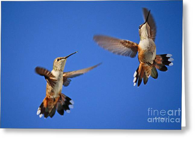 Air Dance Greeting Card by Roena King