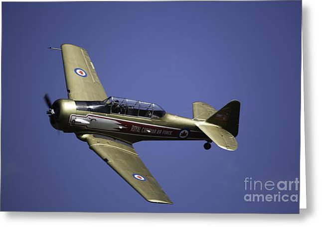 Air Show 16 Greeting Card by Darcy Evans