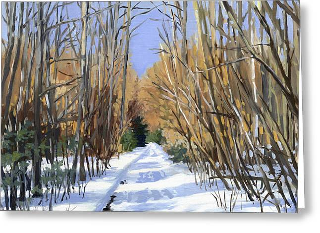 Airline Trail In Winter Greeting Card by Alecia Underhill