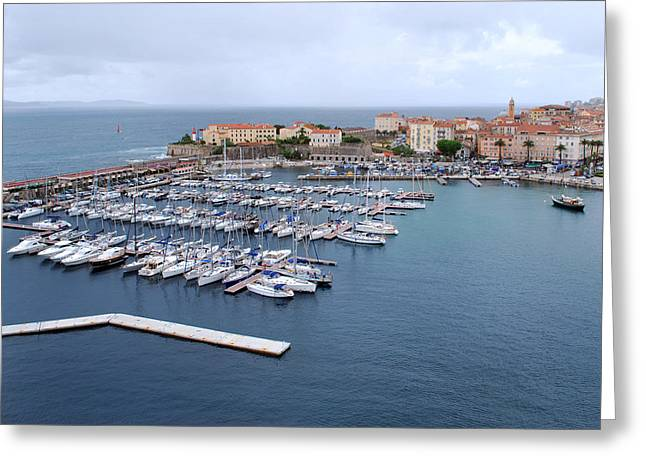 Ajaccio Harbour. Greeting Card by Terence Davis