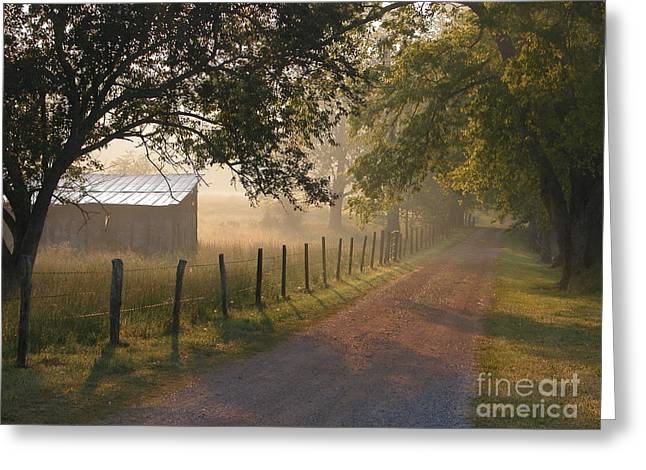 Alabama Morning Greeting Card by Don F  Bradford