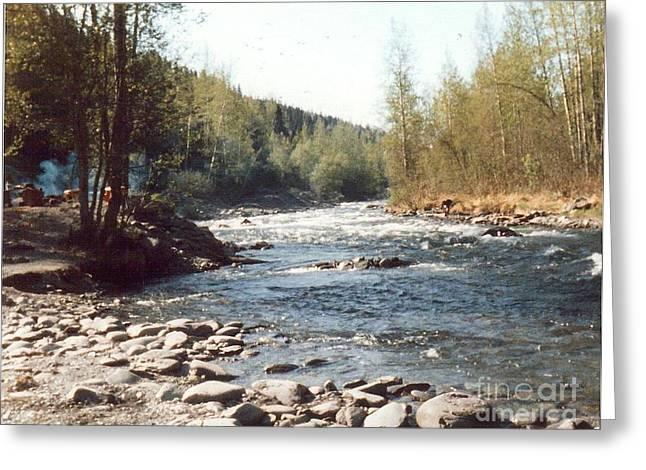 Alaska River Scene Greeting Card by Judyann Matthews