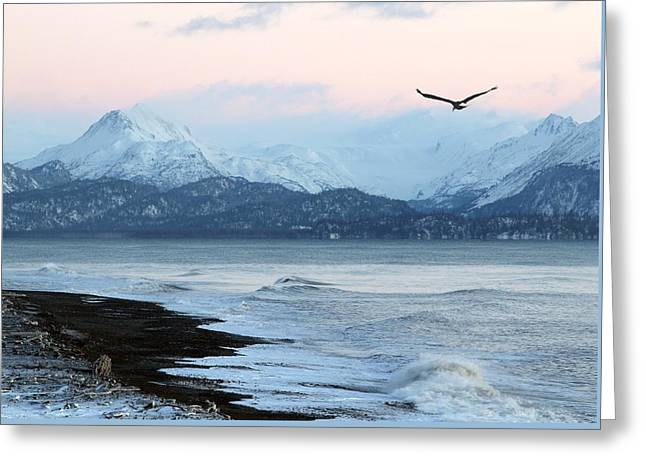 Greeting Card featuring the photograph Alaskan Beach At Sunset by Michele Cornelius