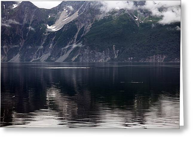 Alaskan Mountain Scene Whales Greeting Card