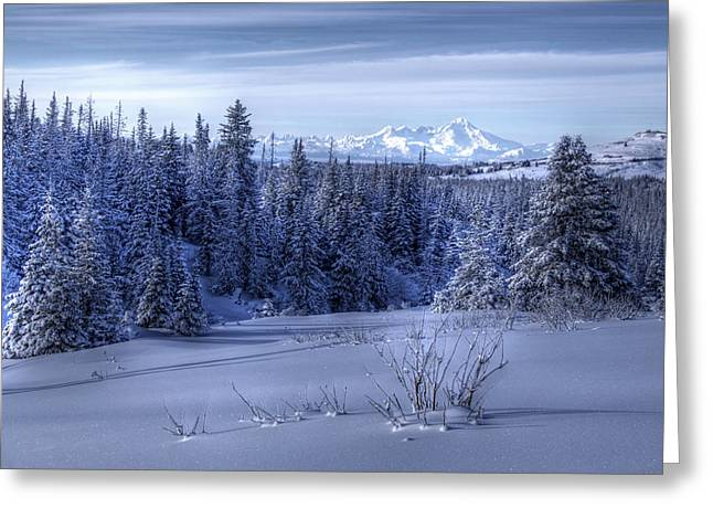 Greeting Card featuring the photograph Alaskan Winter Landscape by Michele Cornelius