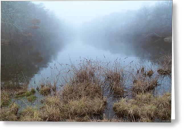 Alcotts Pond In Fog Greeting Card by Steve Gravano