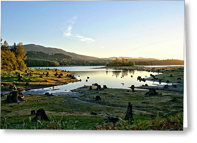 Alder Lake Wa At Sunset Greeting Card