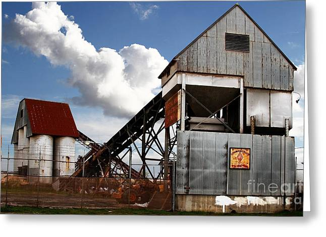 Alive And Well In America . The Old Industrial Sand Plant In Berkeley California . 7d13952 Greeting Card by Wingsdomain Art and Photography