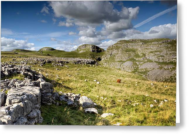 All Alone At Malham Greeting Card by Chris Frost