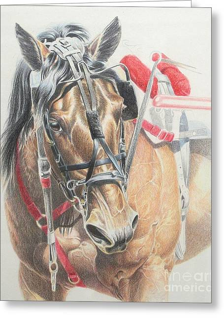 All Heart Greeting Card by Carrie L Lewis