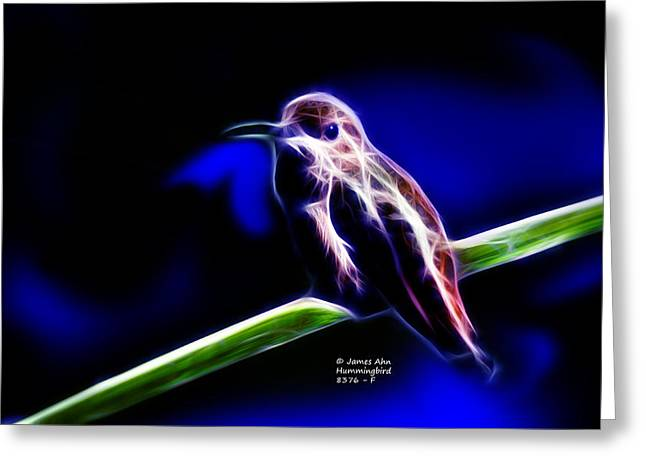 Allens Hummingbird - Fractal Greeting Card
