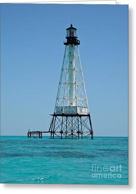 Alligator Lighthouse Greeting Card