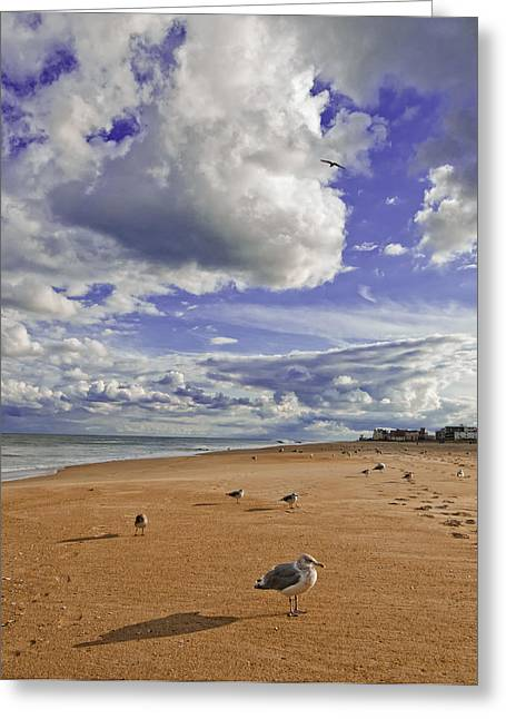 Greeting Card featuring the photograph Alone At Last by Jim Moore
