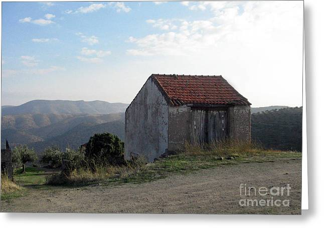 Greeting Card featuring the photograph Alone On The Hill by Arlene Carmel
