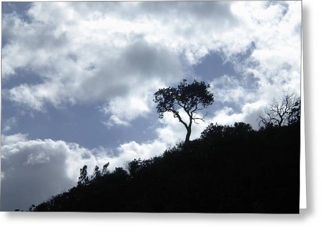 Greeting Card featuring the photograph Alone by Sandra Phryce-Jones