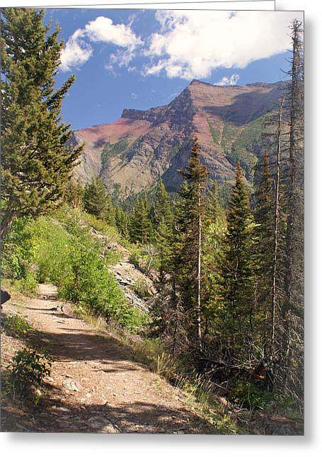Along St. Mary's Lake Trail Greeting Card by Marty Koch