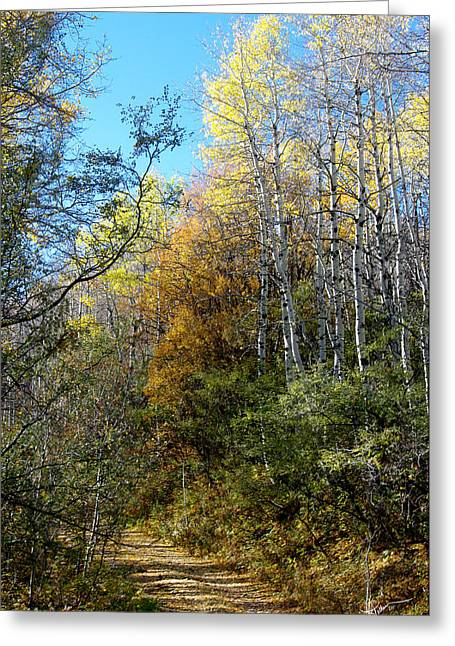 Greeting Card featuring the photograph Along The Back Road by Vicki Pelham