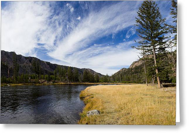 Along The Banks Of The Madison River Greeting Card by Twenty Two North Photography