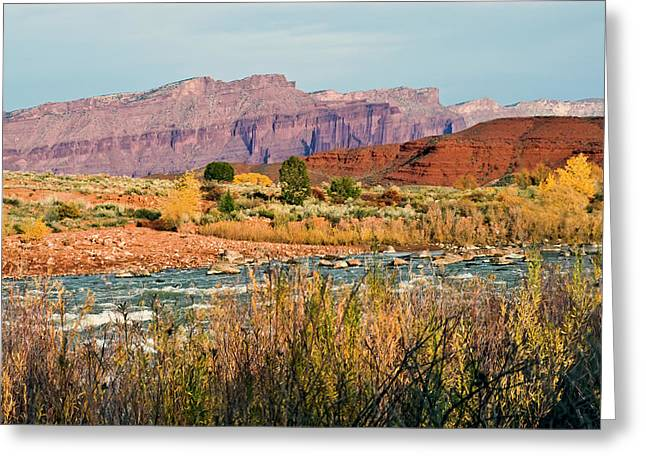 Greeting Card featuring the photograph Along The Colorado River by Geraldine Alexander