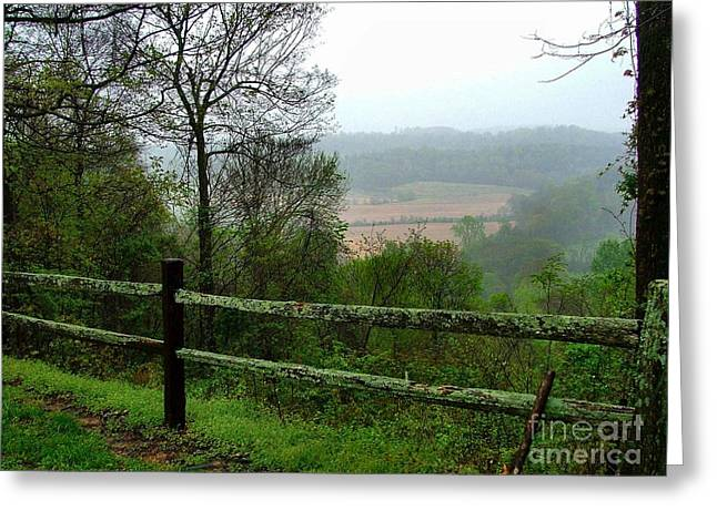 Along The Natchez Trace Greeting Card by Julie Dant