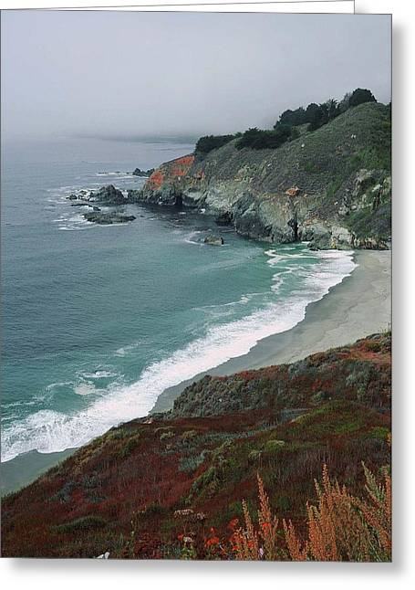 Along The Pacific Coast Greeting Card