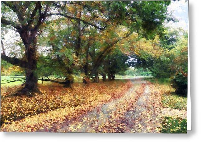 Along The Path Under The Trees Greeting Card by Susan Savad