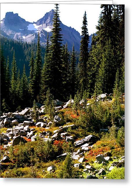 Alpine Meadow Early Autumn Greeting Card by Christine Burdine