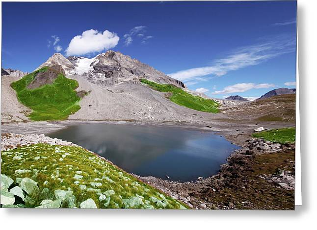 Alpine Greeting Card by Mircea Costina Photography