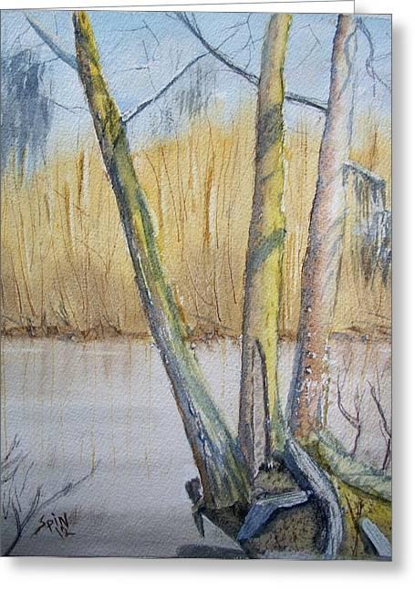 Altamaha River Three Trees Greeting Card by Spencer  Joyner