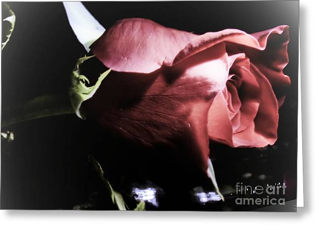 Greeting Card featuring the photograph Always And Forever 2 by Janie Johnson
