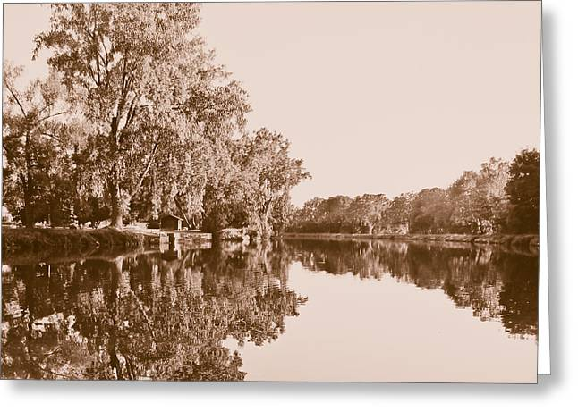 Greeting Card featuring the photograph Amber Reflection by Sara Frank