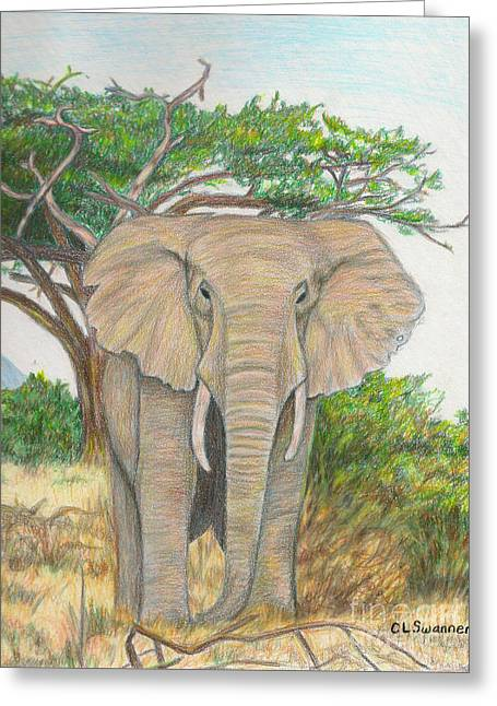 Amboseli Elephant Greeting Card by C L Swanner