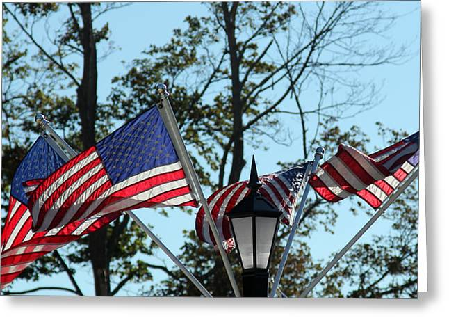 American Beauty Greeting Card by James Hammen