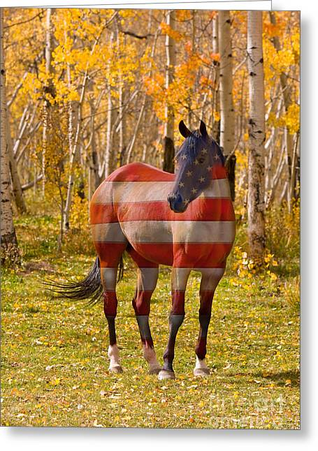 American Bred Greeting Card by James BO  Insogna