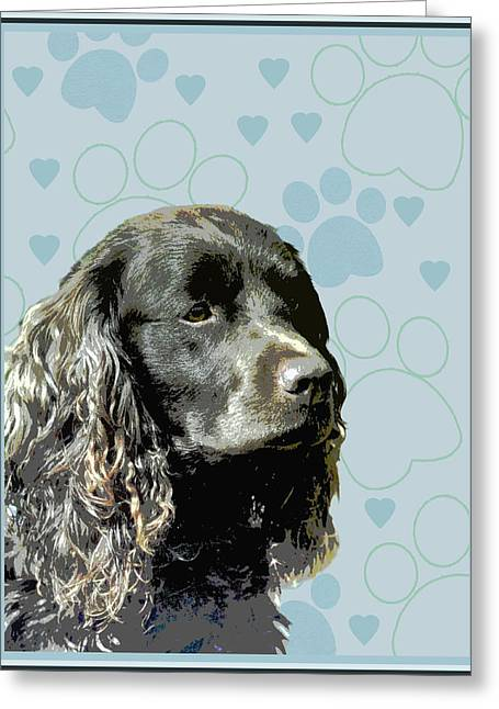 American Water Spaniel Greeting Card by One Rude Dawg Orcutt