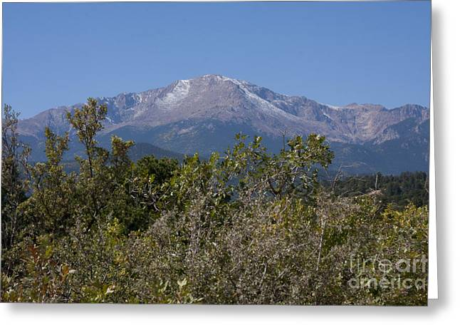 Americas Mountain Greeting Card by Marta Alfred