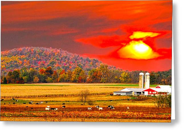 Amish Farm Sundown Greeting Card by Randall Branham
