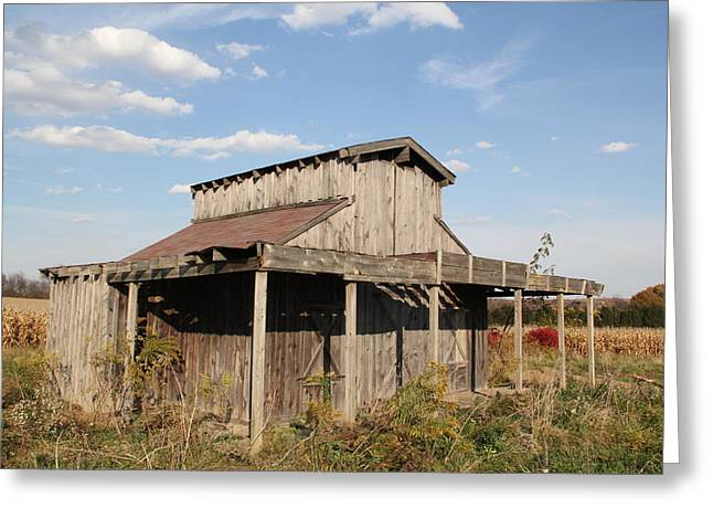Amish Shed #3 Greeting Card by Donna Bosela