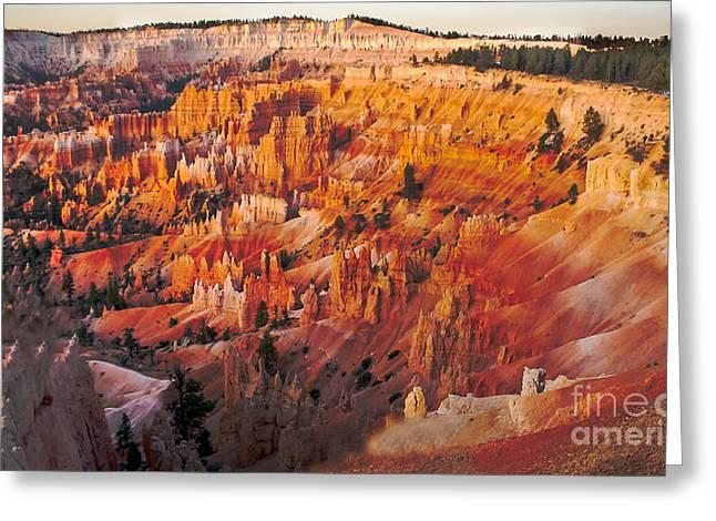 Amphitheater At Bryce Canyon Greeting Card by Robert Bales