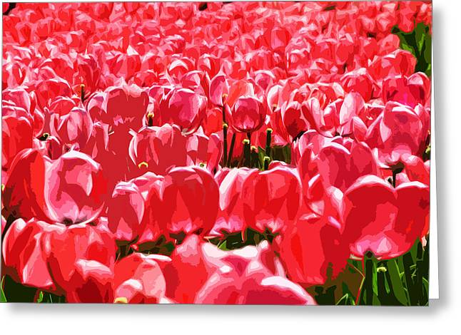 Amsterdam Tulips Greeting Card by Phill Petrovic