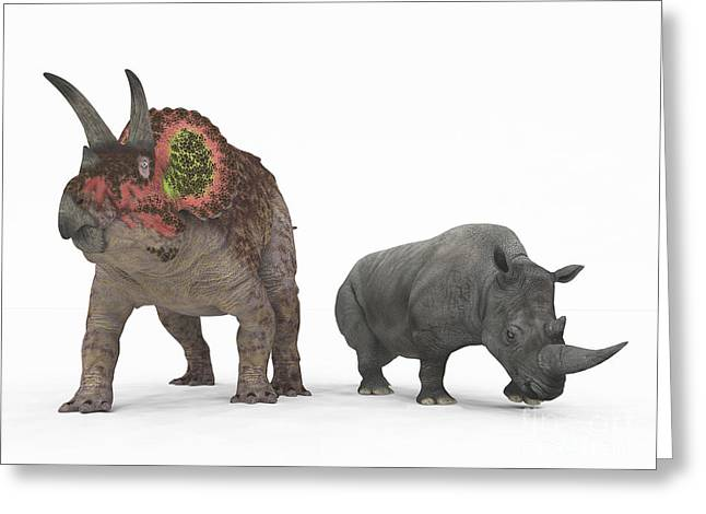 An Adult Triceratops Compared Greeting Card by Walter Myers