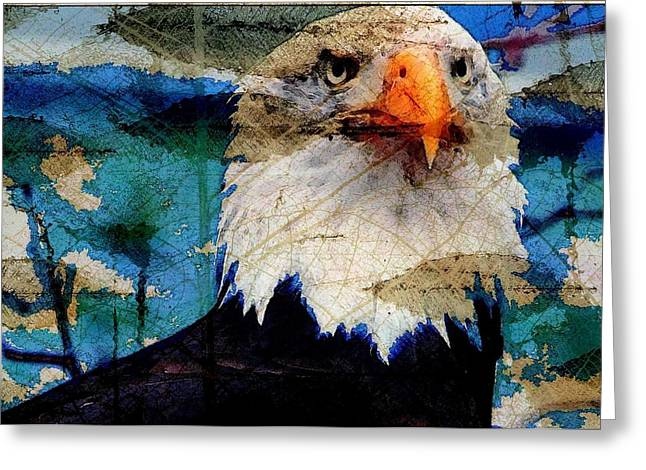 American Bald Eagle Greeting Card by Carrie OBrien Sibley