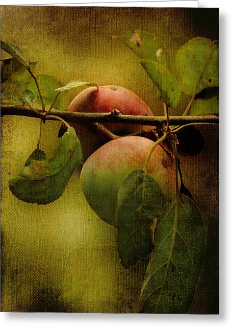 An Apple A Day Greeting Card by Kathleen Holley