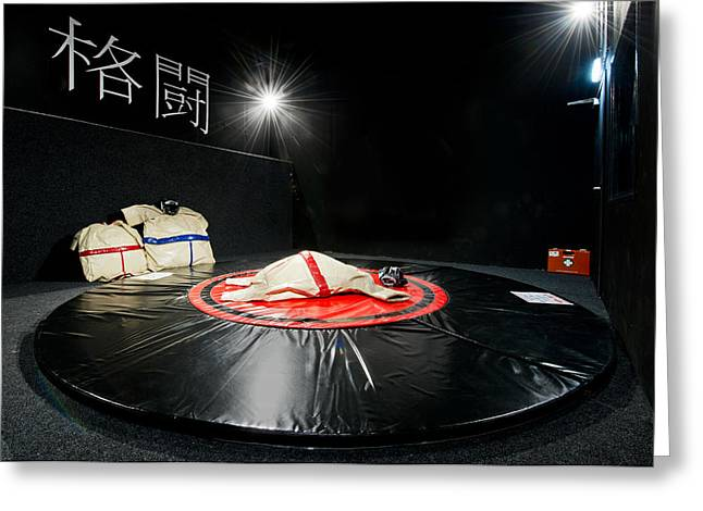 No Clothing Greeting Cards - An Indoor Sumo Wrestling Game Area Greeting Card by Corepics