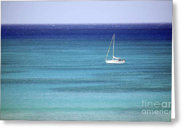 Anchored In Paradise Greeting Card by Glennis Siverson