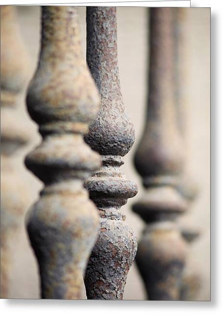 Ancient Spindles Greeting Card by Terry Ellis