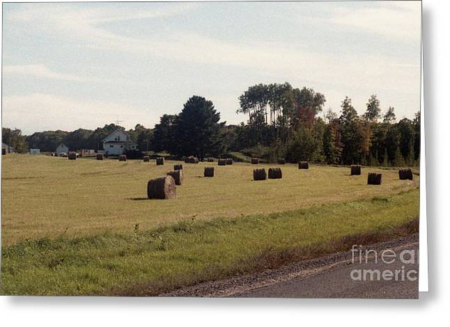 And A Crop In The Field Greeting Card by Richard Amble