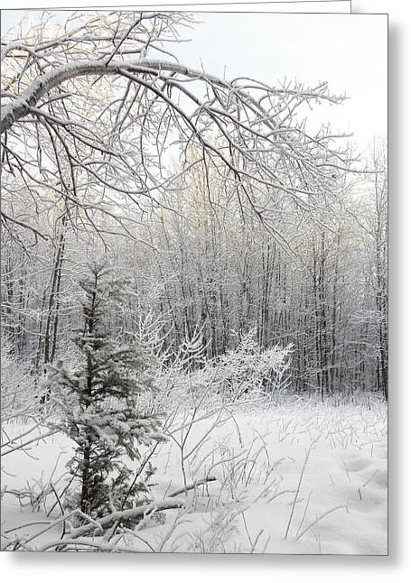 And More Snow Greeting Card