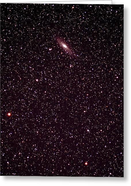 Andromeda Galaxy Greeting Card by John Sanford