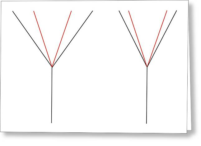 Angle Illusion Greeting Card by